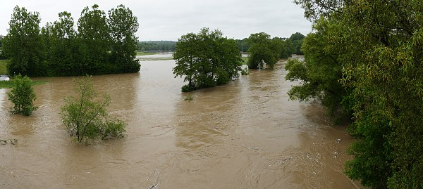 Neckar flood
