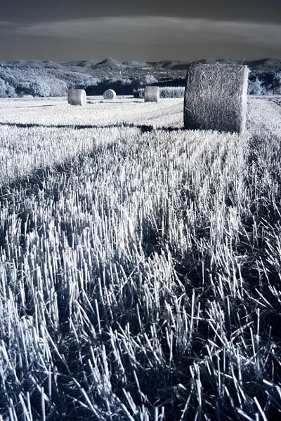 Infrarotaufnahme - Strohballen auf einem Stoppelfeld zwischen Häslach und Altenriet mit Blick auf die Albkette und die Achalm