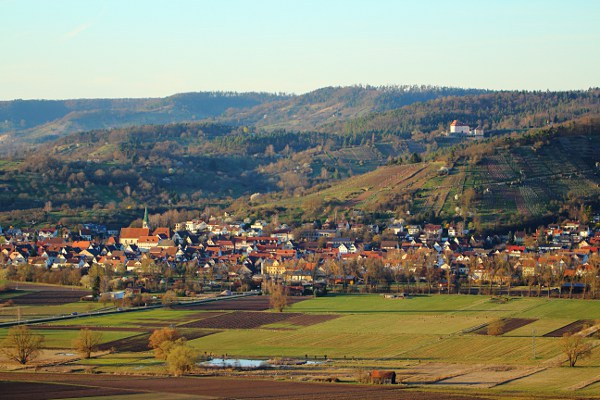 view of Unterjesingen and castle Roseck