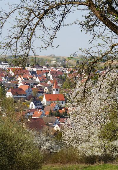 Aichtal-Aich in Spring
