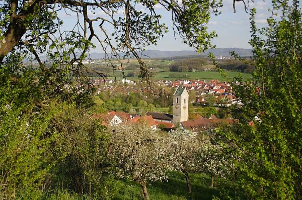 Blick auf Neckartailfingen und den schiefen Kirchturm der Martinskirche