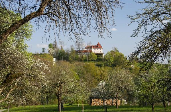 Schloss Roseck
