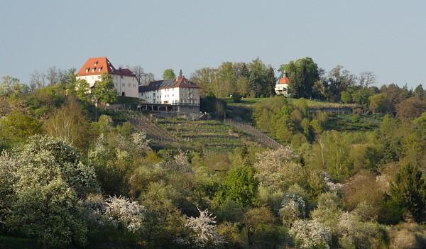 Schloss Roseck von Süden