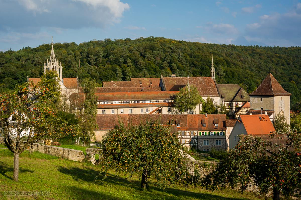 fruit trees and Bebenhausen monastery