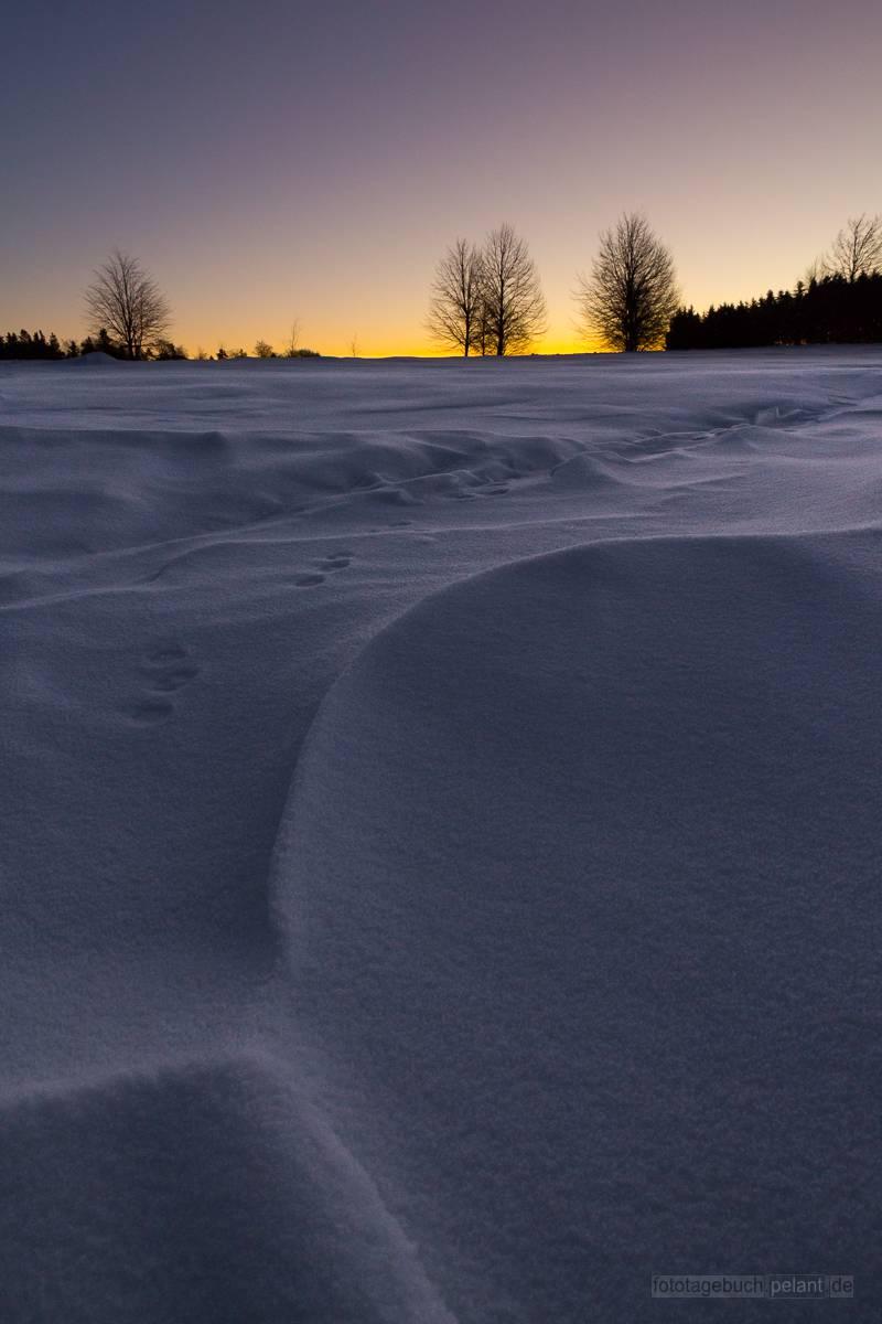 Morgendämmerung über der Schneedecke auf der Alb