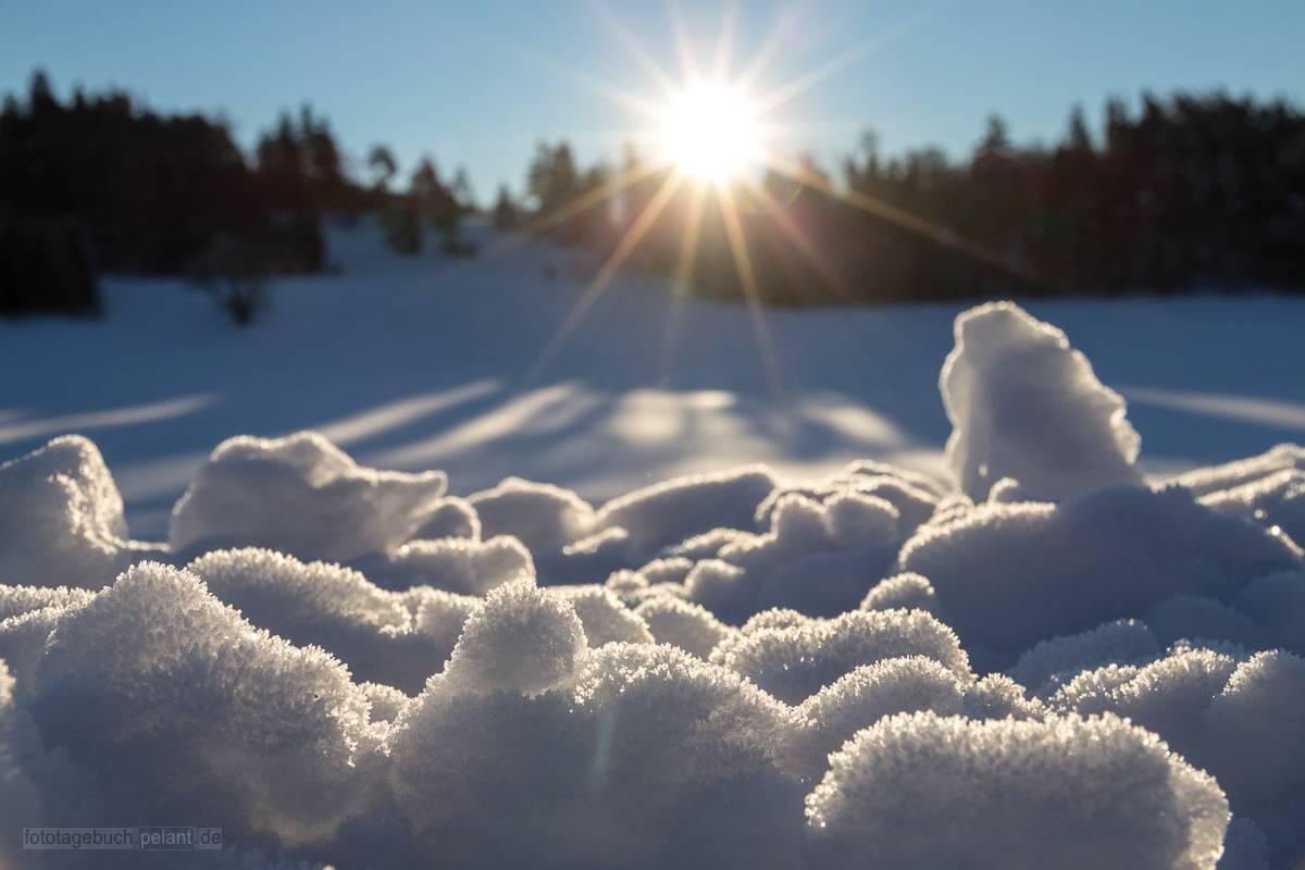 Frühe Morgensonne knapp über dem Horizont im Winter auf der Schwäbischen Alb (Raichberg bei Albstadt Onstmettingen)