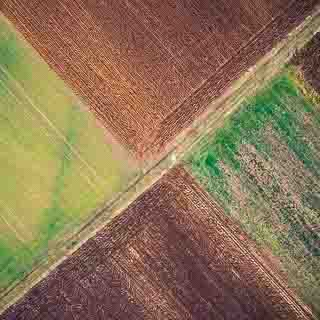 Luftaufnahme von Feldern in Winterfarben mit diagonal verlaufendem Feldweg