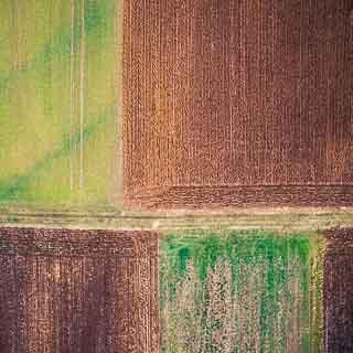 senkrechte Luftaufnahme von Feldern im Winter
