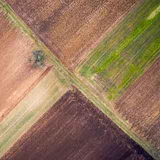 Luftaufnahme von Feldern in winterlichen Farben Anfang Februar mit diagonal verlaufendem Feldweg