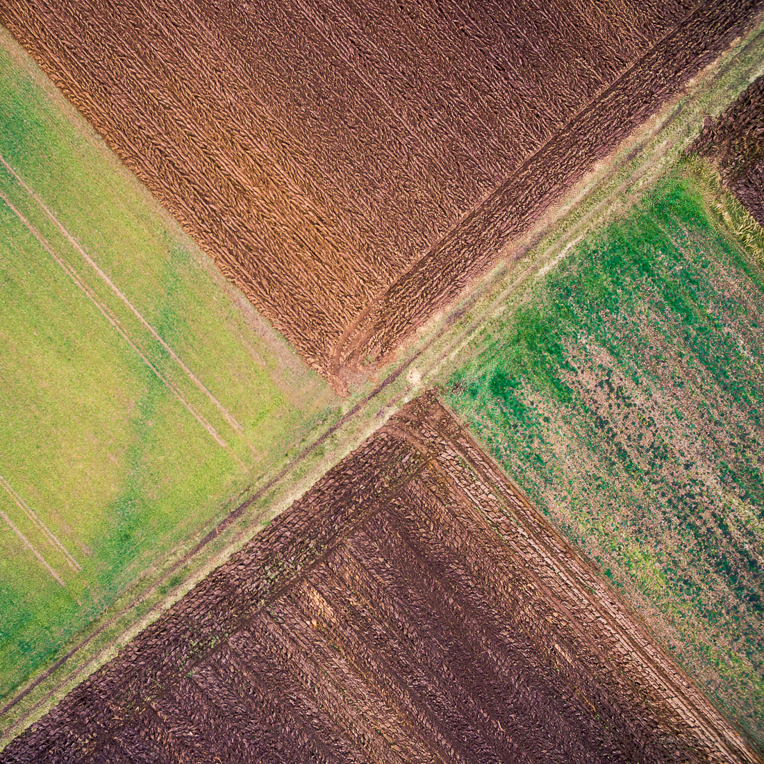 aerial view of fields in winter