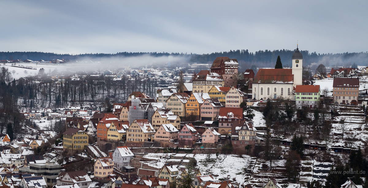 Altensteig in black forest in winter