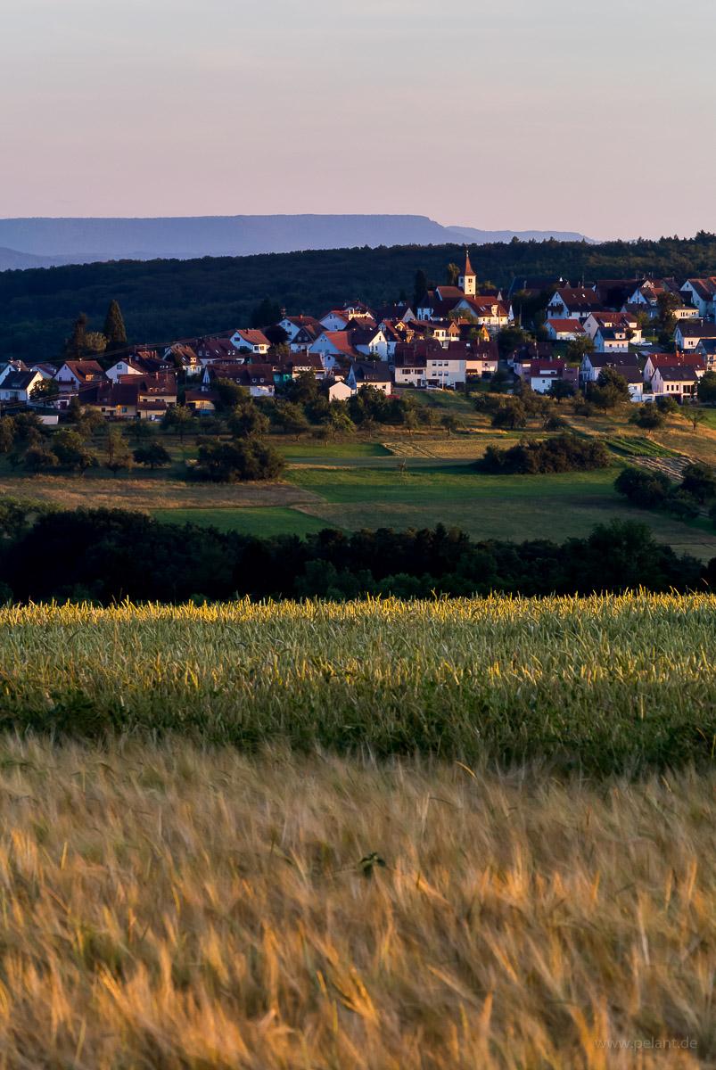 Altenriet