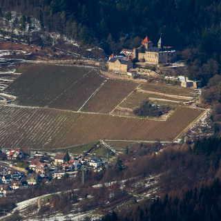 Blick vom Hohloh Turm auf das Schloss Eberstein (Gernsbach)