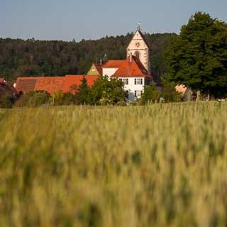 Blick über ein Getreidefeld auf den Kirchturm von Tübingen-Weilheim