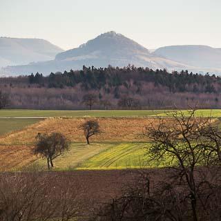 Blick über Felder in Winterfarben auf die Achalm
