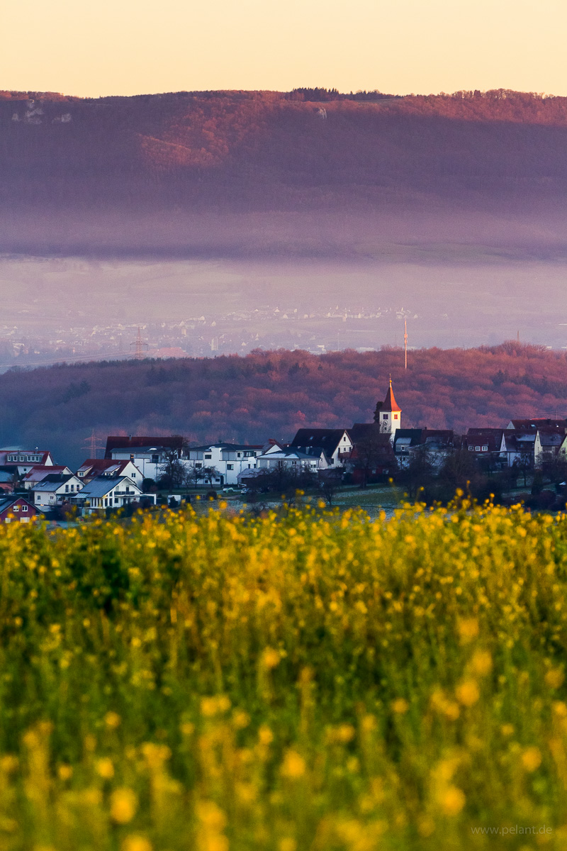 Altenriet in the evening light with view of the edge of the Schwäbische Alb