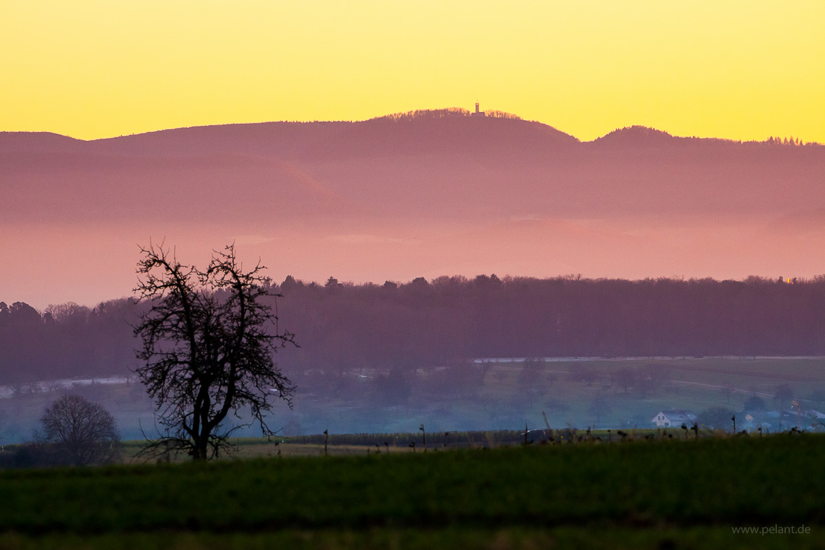 view of the Roßberg (with tower) at the edge of the Schwäbische Alb during sunset