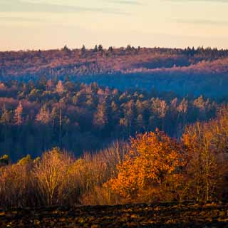 view of Schaichtal and Aichtal in the Schoenbuch forest in the winter evening light