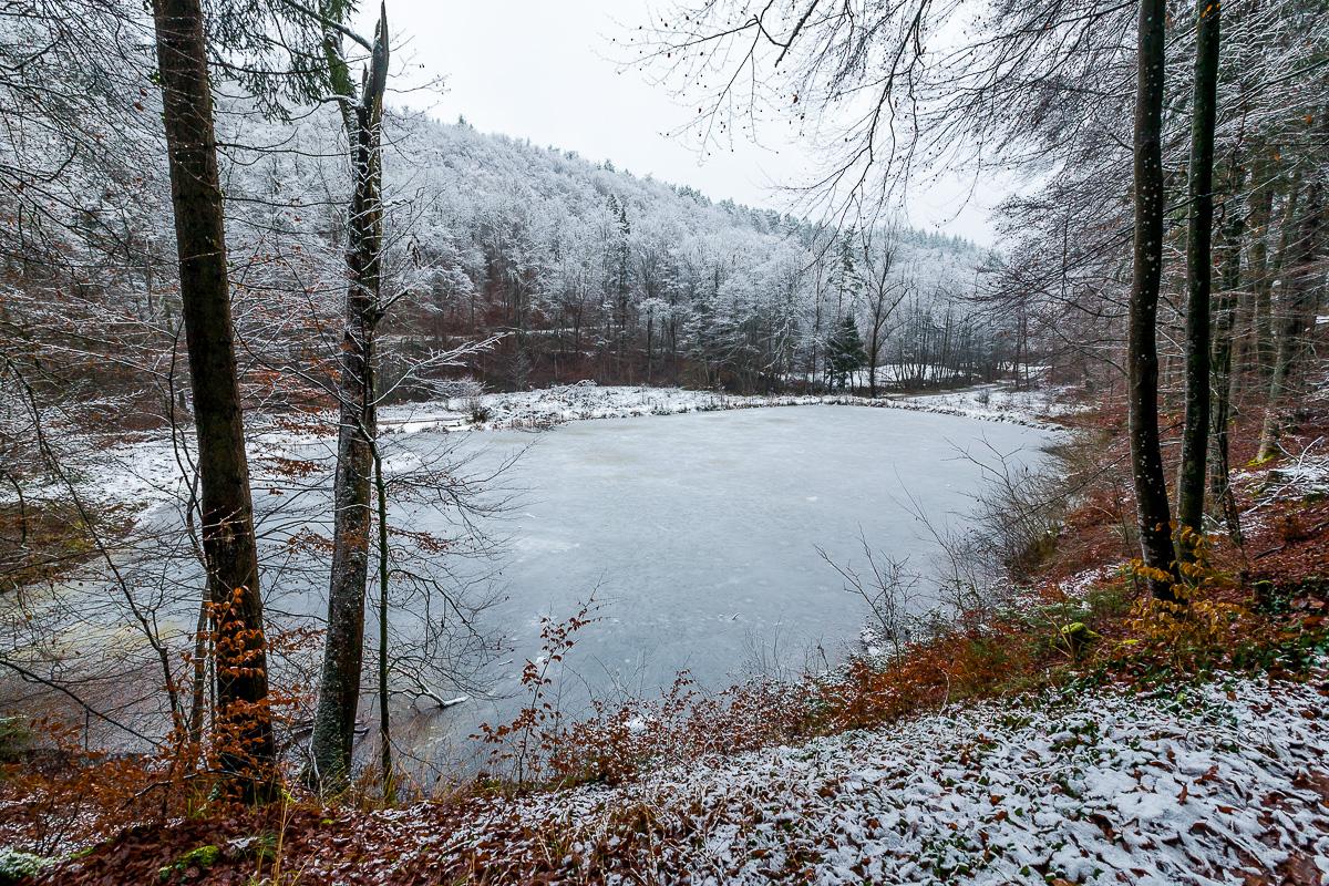 pond in Schaichtal in winter