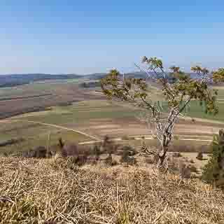 view from Kornbühl hill of the fields of the Schwäbische Alb