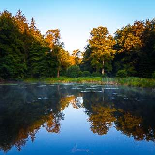 Steigweiher (lake) in the Schaichtal in morning light